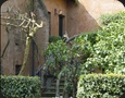 Rome serviced apartment Colosseo area | Photo of the apartment Garden.